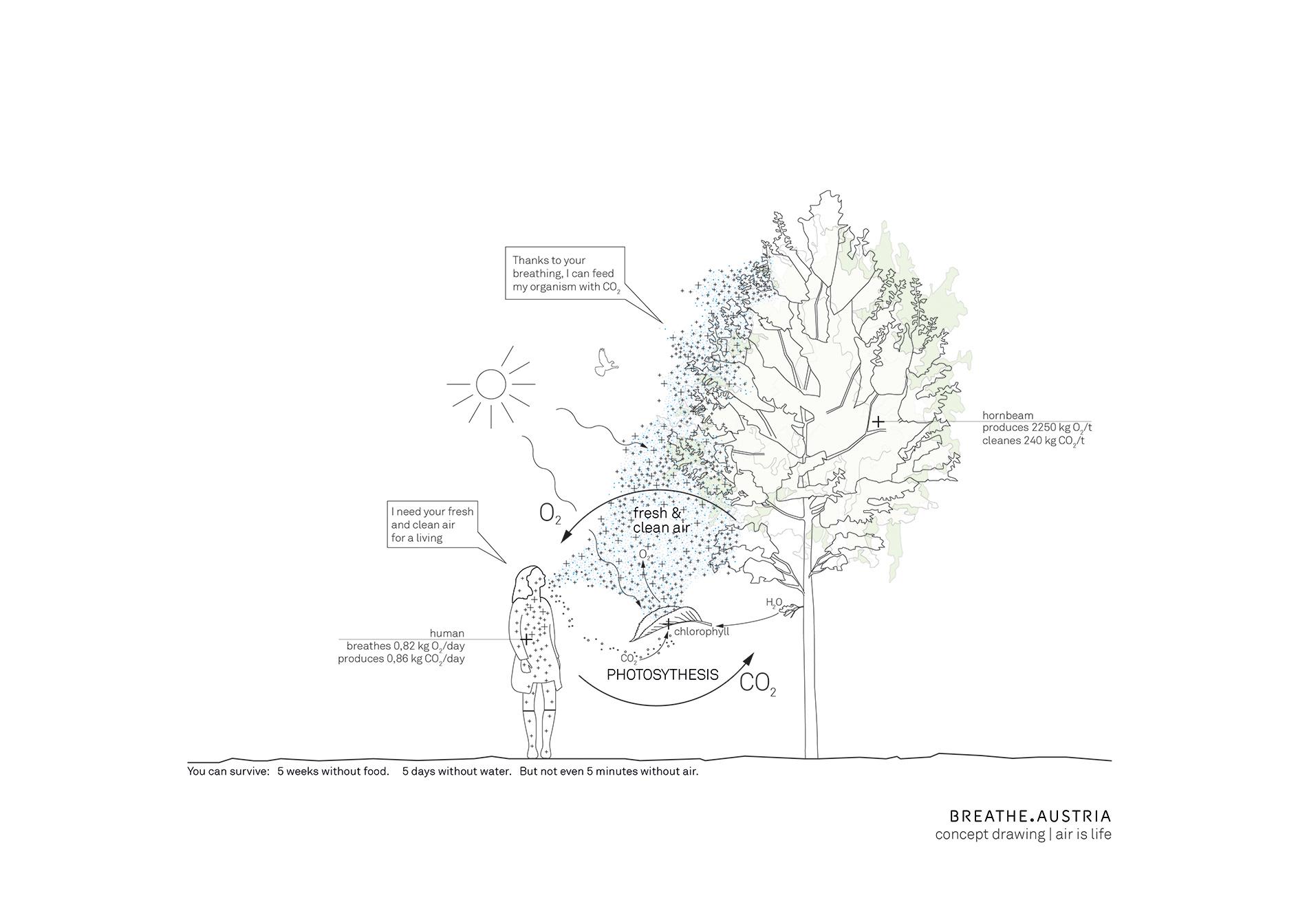 terrain_BREA_-concept_drawing_02